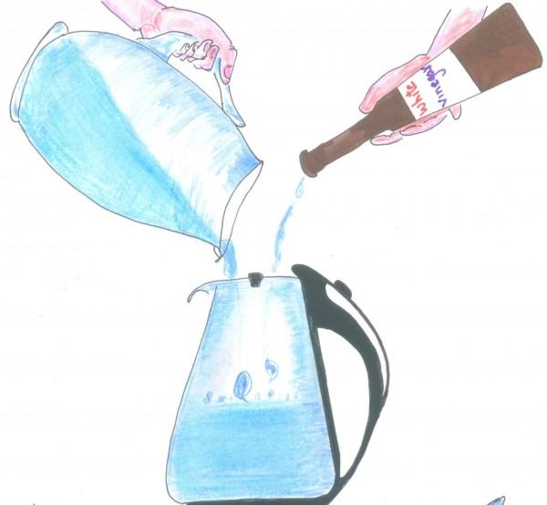 avkalka vattenkokaren