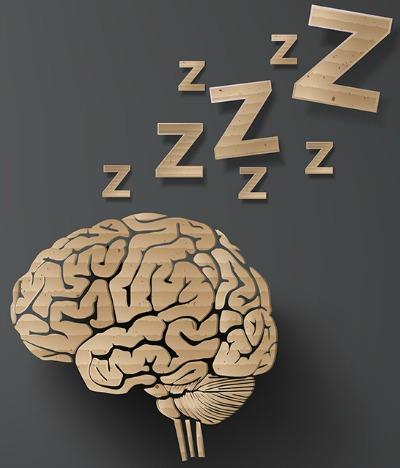 hjerne-søvn
