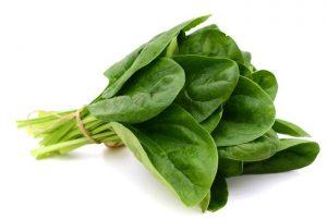 spinat-bund