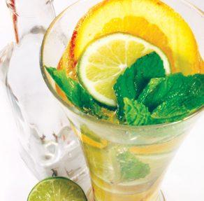 Mojito-drik med citrus